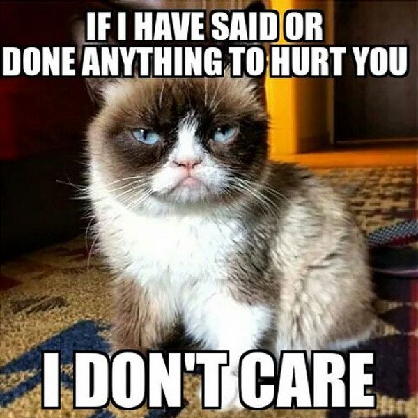 hurt you i don t care meme posted by rush rox