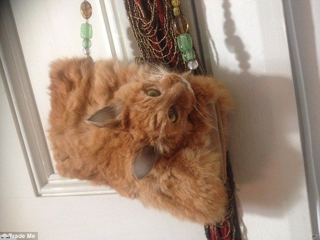 This glamour puss hand bag made from a taxidermy cat has been listed for