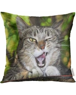ARHOME Green Funny Cat Winks Teeth Eyes Face Sleep Pillow Case 18x18 Inches Pillowcase