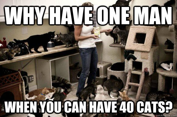 why have one man when you can have 40 cats
