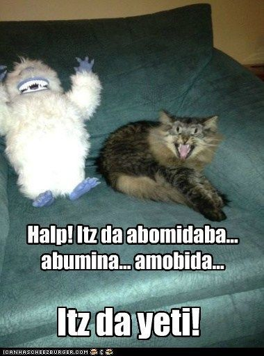 abominable snowman captions Cats christmas danger scary snowman winter yeti