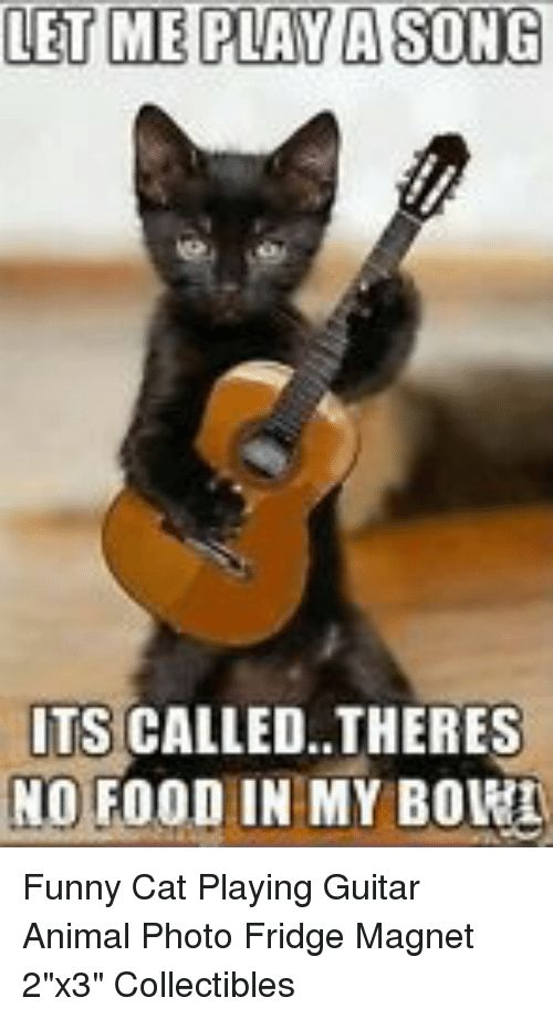 Food Funny and Animal LET ME PLAY A SONG ITS CALLED THERES