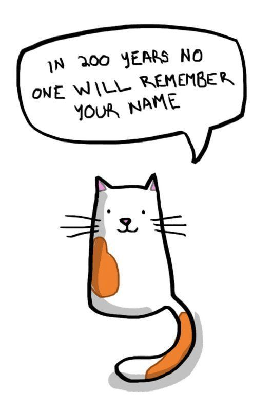 12 Hard Truths from Soft Cats only your cat Awkward Funny Cute Cartoon Cartoon