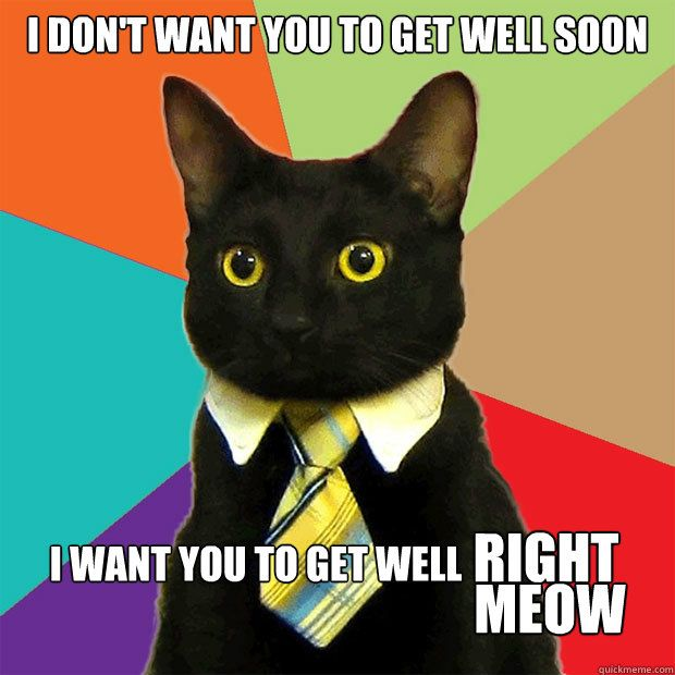 I don t want you to well soon I want you to well right meow