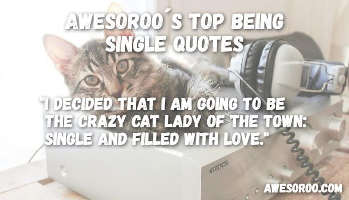 cats in being single quote