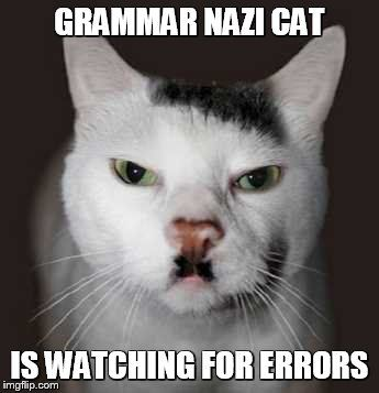 Grab the Best Of Funny Cat Memes Conference Calls