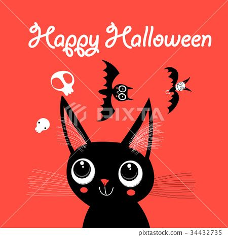 Funny Cat for Halloween