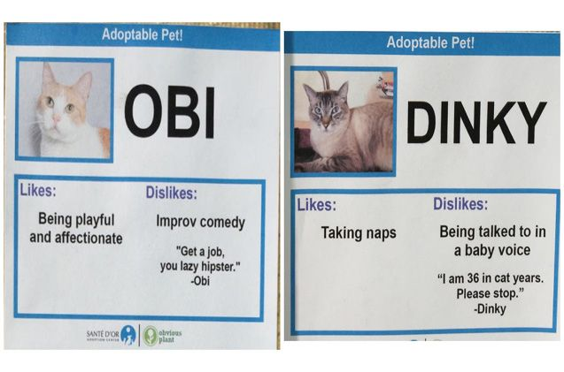 Here are a few of the cards we thought were brilliant