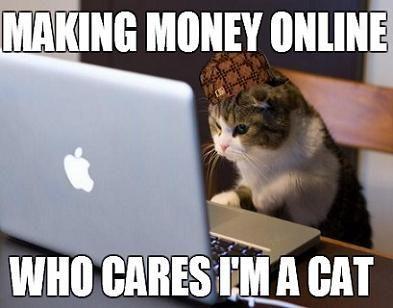 funny cats makemoneyonline