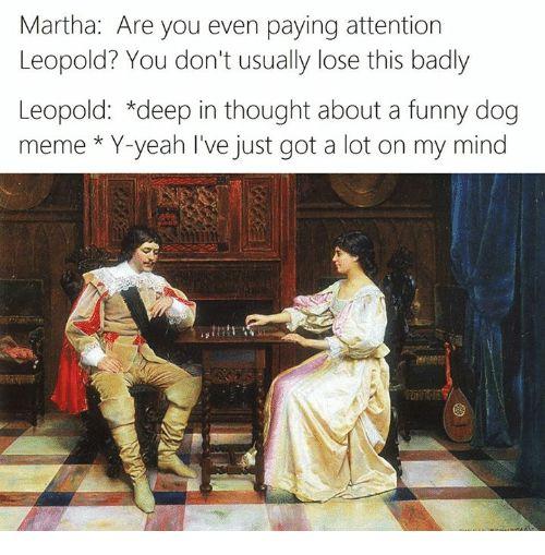 Grab the Elegant Funny Australian Animal Memes