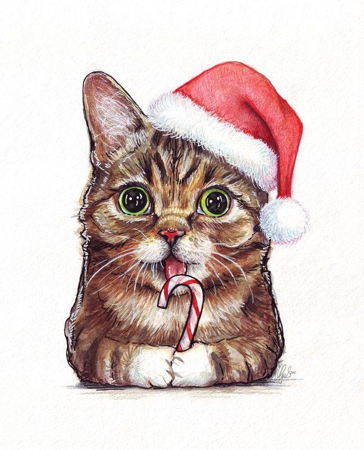 Lil Bub in Santa Hat Holidays