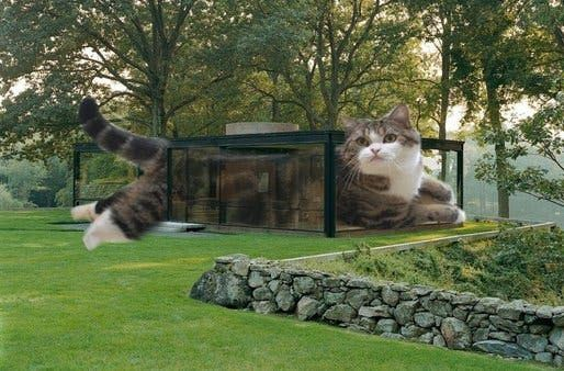 You are wel e to join us and submit your own Architectural LOLCAT at the following tumblr page and suggest your own captions