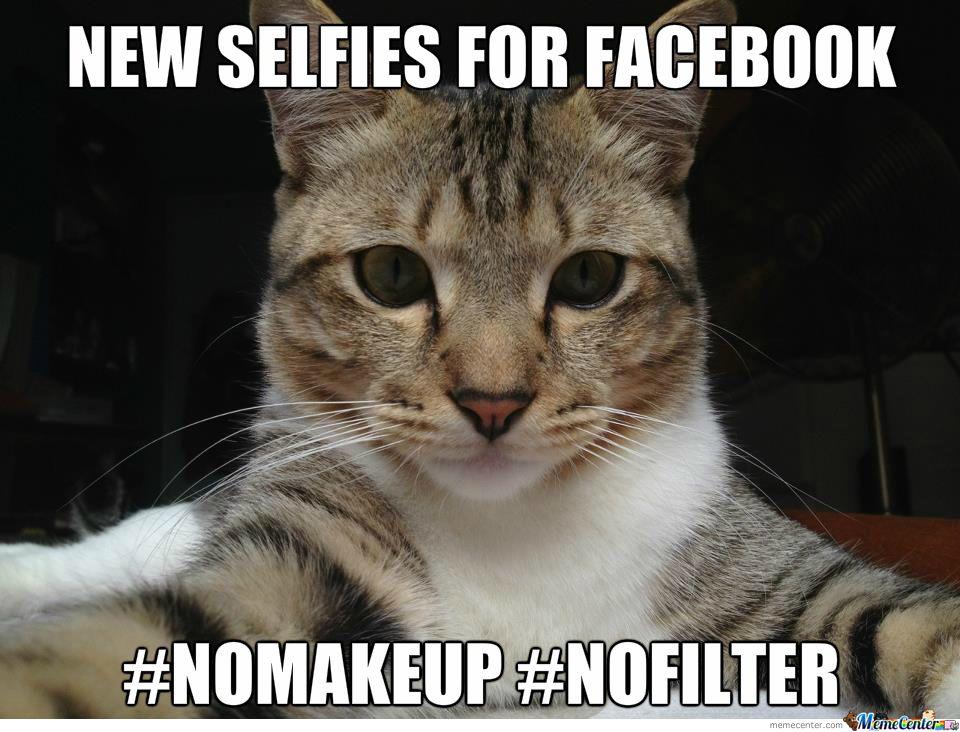 Selfies Cat