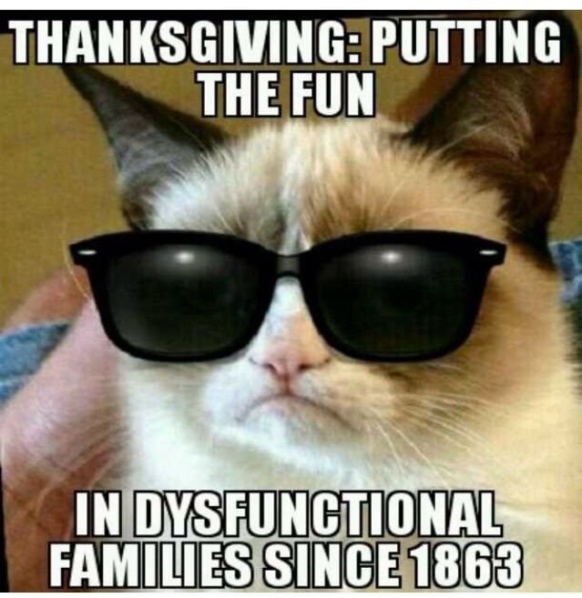 Thanksgiving putting the fun in dysfunctional families since 1863