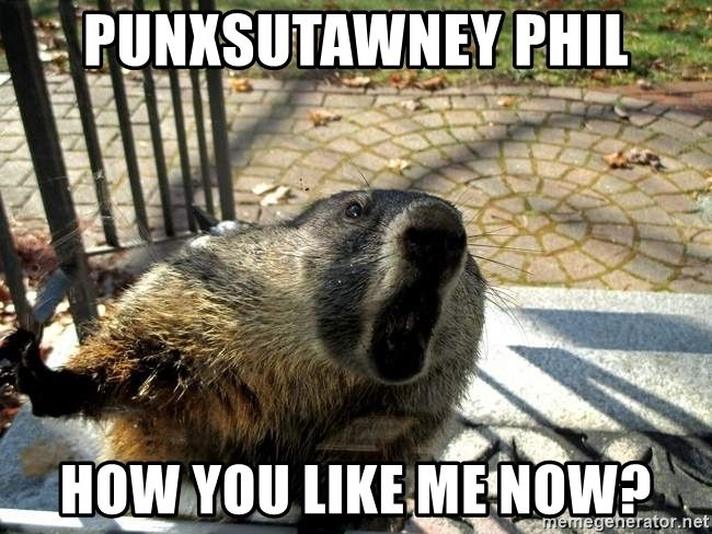 Cranky Groundhog Punxsutawney Phil How you like me now