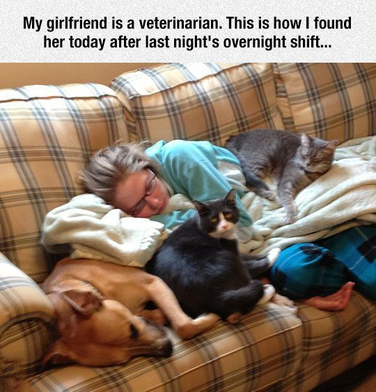Billedresultat for motivational veterinarian