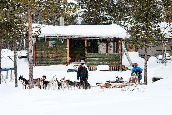 Husky Home Kiruna 2019 All You Need to Know BEFORE You Go with s TripAdvisor