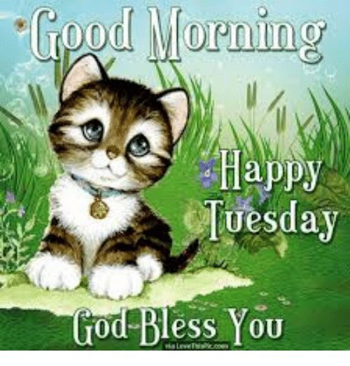 Blessed Dank and Happy 0000 Happy Tuesday od Bless YOU
