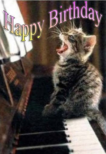 Happy Birthday singing cat sitting on a piano Cat Birthday Happy Birthday Wishes Birthday