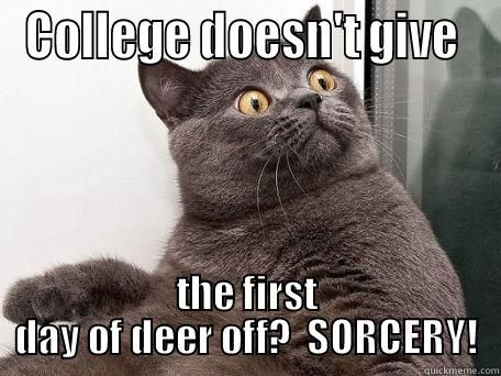 COLLEGE DOESN T GIVE THE FIRST DAY OF DEER OFF SORCERY conspiracy cat