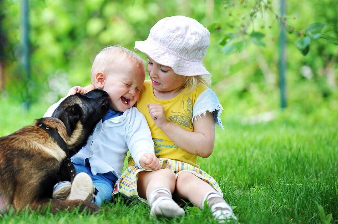 goodmorning pet love lovely dog baby goodnight cute sleep bed adorable play cry smile rio grass kiss kids sweet summer