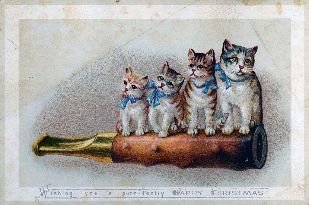 """Wishing you a purr fectly happy Christmas"" via Nova Scotia Archives"