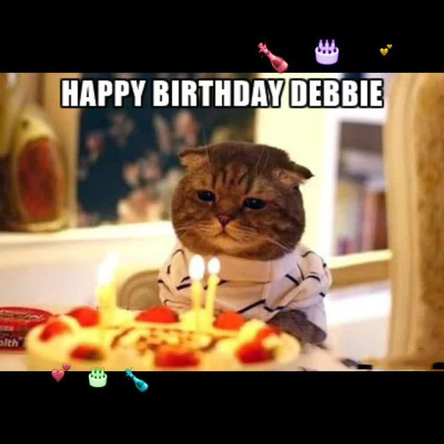 Top birthday cat memes