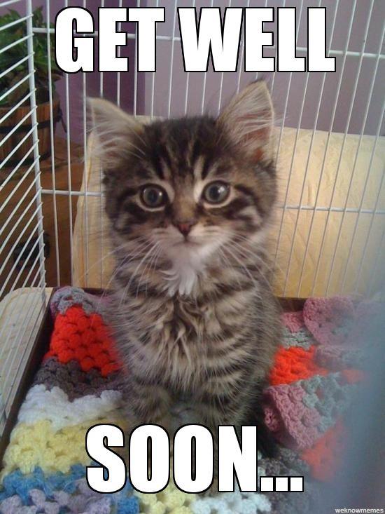 Get Well Soon Kitty