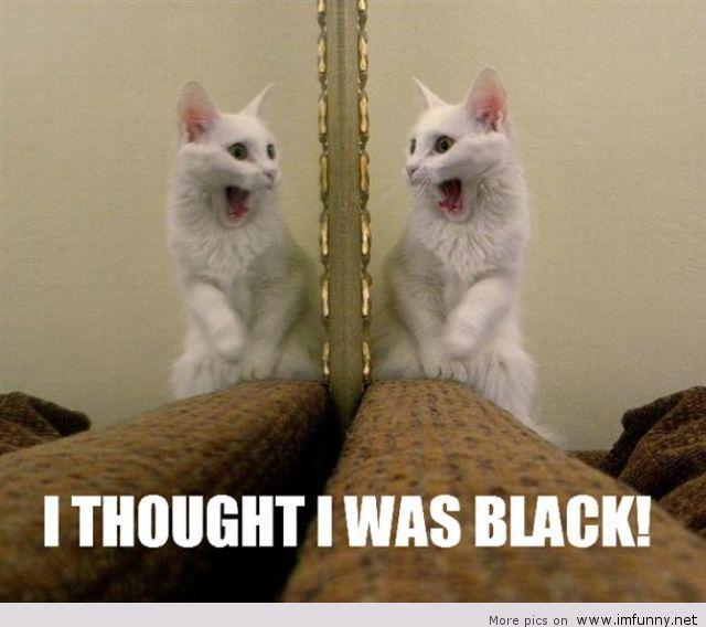 But I am black