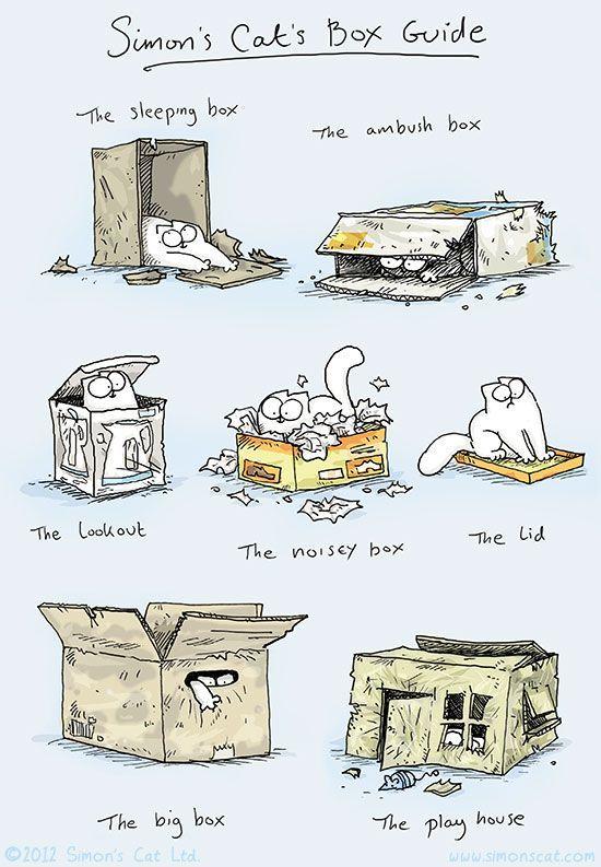Simons Cats Box Guide