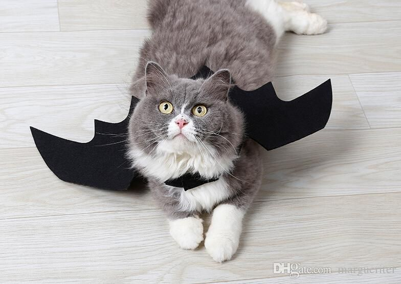 Funny Cats Cosplay Costume Halloween Pet Bat Wings Cat Bat Costume Fit Party Dogs Cats Playing Pet Supplies Halloween Costumes Cat Halloween Costumes Cat