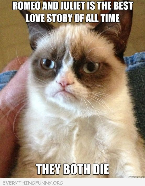 grumpy cat meme picture love romeo and juliet both