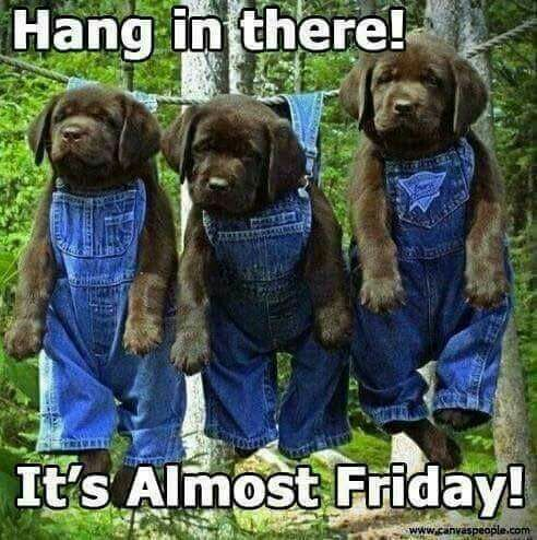 Almost Friday Thursday Morning Happy Thursday Wednesday Happy Friday Weekend Quotes