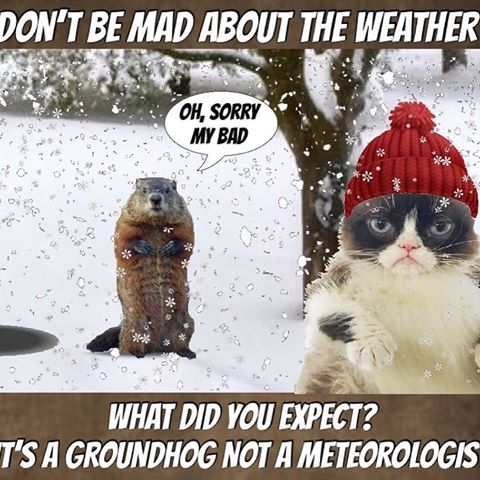 Grumpy Says Don t Blame The Groundhog ❄ 🤷🏠♀