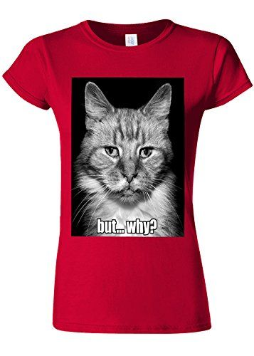 Meow Cat Kitten But Why Funny Novelty Cherry Red Women T Shirt Top M