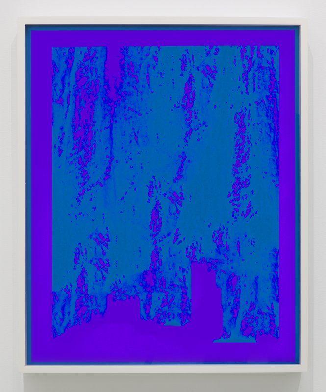 Joe Mama Nitzberg Untitled Henri Matisse by Carl Van Vechten 1