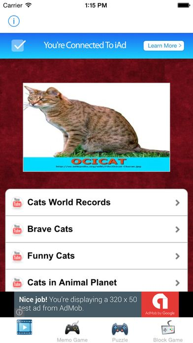 Learn English Via Cats & Kittens Names Games for Kids lite Screenshot on iOS