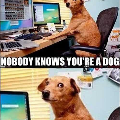Nobody Knows You re A Dog meme