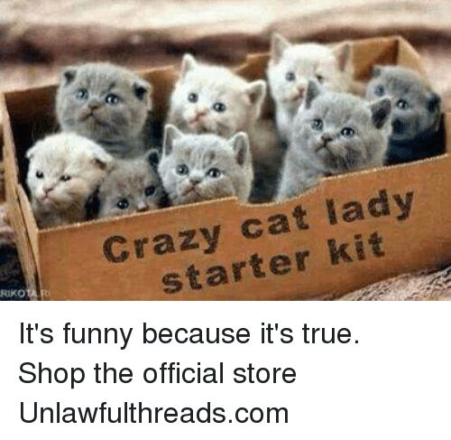 Crazy Funny and Memes Crazy cat lady starter kit RIKO It s funny because