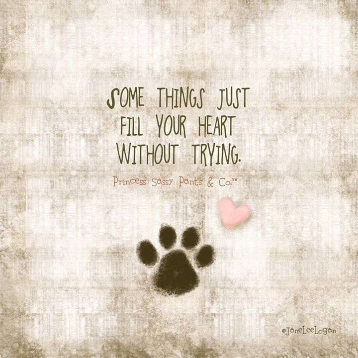 Funny Quotes About Dogs Quotes About Dog Owner 37 Quotes Funny Quotes About Dogs Pretty