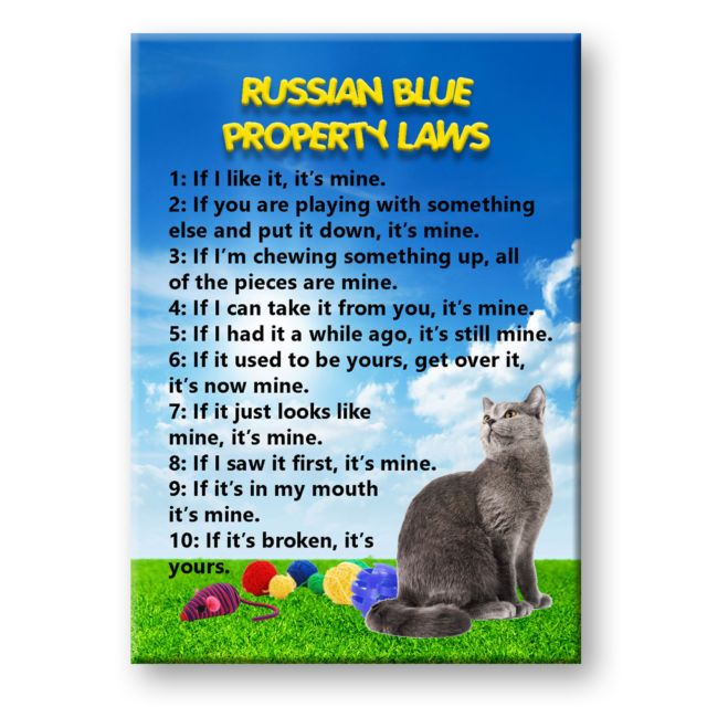 RUSSIAN BLUE Cat Property Laws Fridge Magnet Funny