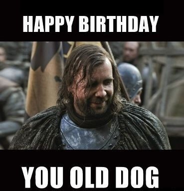 Happy Birthday Funny you old dog says sandor from game of thrones
