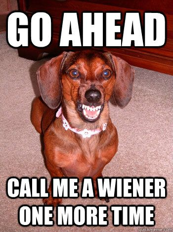 go ahead call me a wiener one more time