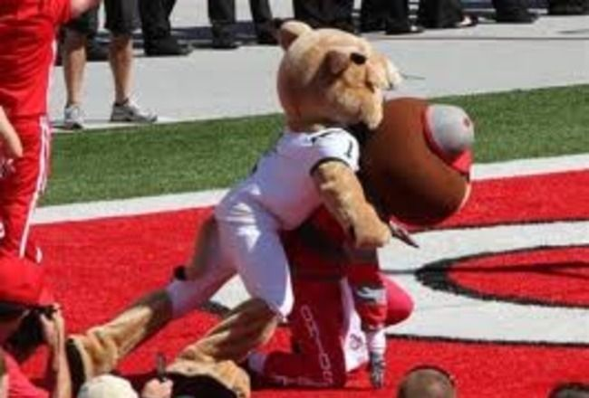 15 Most Savage Mascot Fights in Sports History Bleacher Report