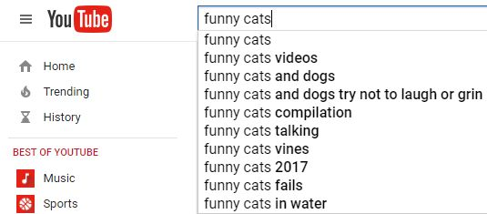 Grasp the Beautiful Funny Cat Pictures Hacker Rank Question