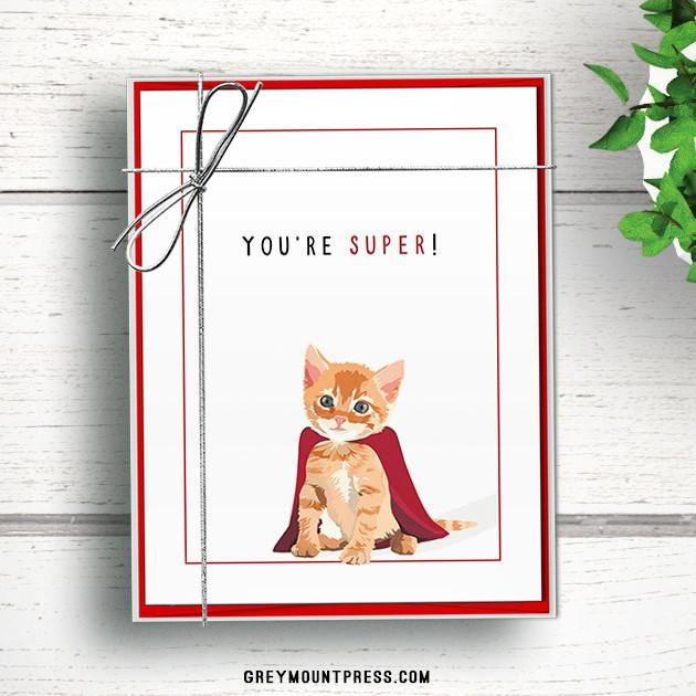 Cat thank you notes Blank thank you cards Notecards