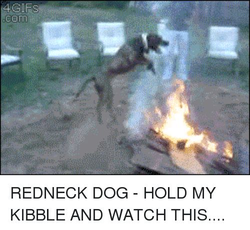 Redneck Gifs and Watch GIFS cOm