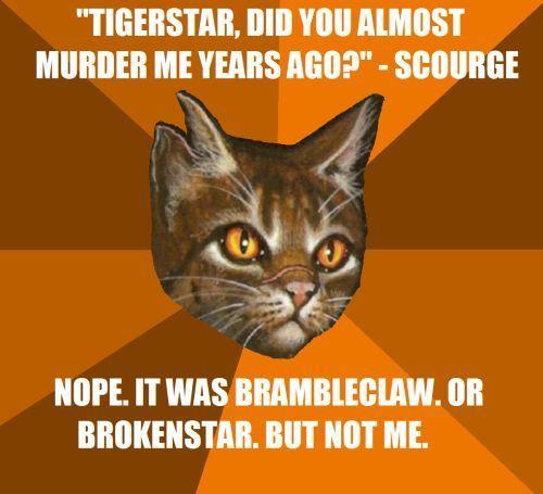 Warrior cats memes Cov 02 23 17 So funny