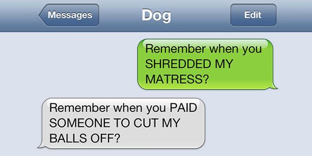 25 Hilarious Texts From Dogs Animals
