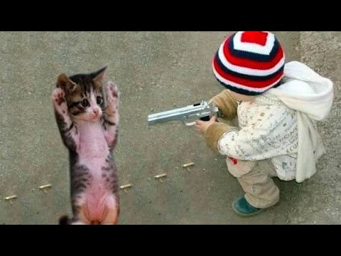 Top Funny Cats Annoying Babies and Babies Annoying Cats in the World
